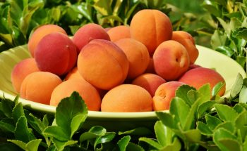 A is for Apricot